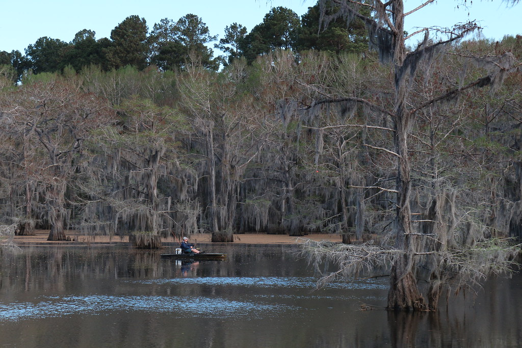 caddo lake state park map with 16861765249 on Nyctourist Map blogspot furthermore Equestrian trails together with Texas likewise Mission Tejas as well Caddo.