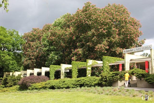 Tierpark Friedrichsfelde 17.05.201522