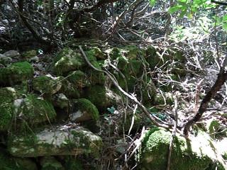 Remontée du Velacu après la confluence Velacu/Carciara : les vestiges de chemins de carbonare