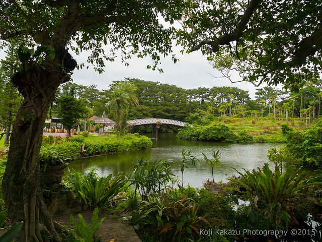 東南植物楽園-44