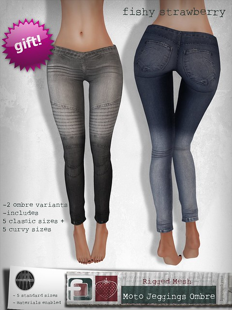 Moto Jeggings - Ombre