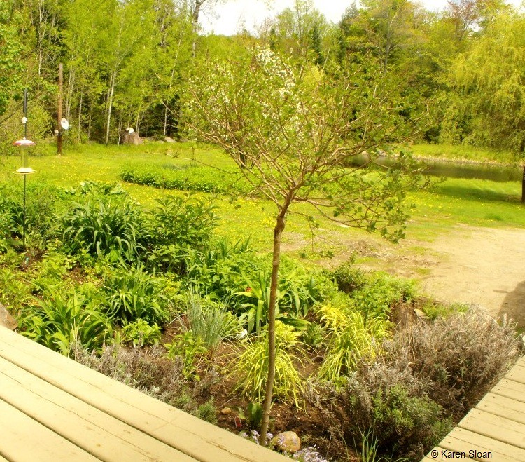 Garden Decor Ontario: Garden Design In Haliburton Ontario