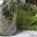 Swiss Chard Salad (3)