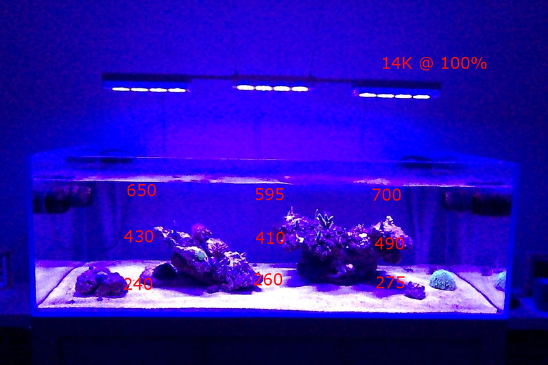 Hydra 2652maxspectRadion pro oh my!! - Reef Central Online Community & Hydra 2652maxspectRadion pro oh my!! - Reef Central Online ... azcodes.com