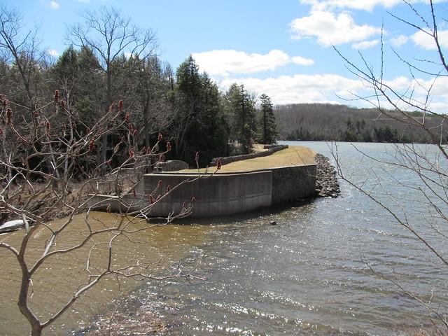Myosotis Dam