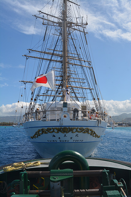 Kaiwo Maru stern