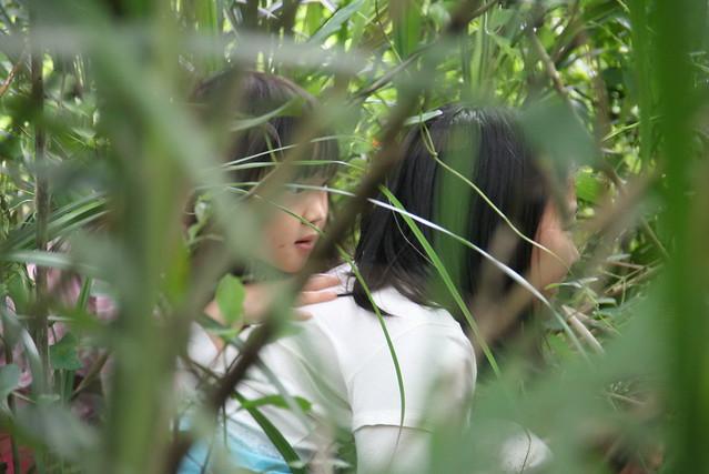 孩子學習在自然裡安靜。圖片來源:七世代自然生活學校。