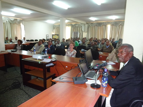 LIVES gives seminar to MoA staff on market oriented agricultural extension services (Photo:ILRIAklilu Bogale)
