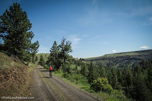 Treo Ranch 2015