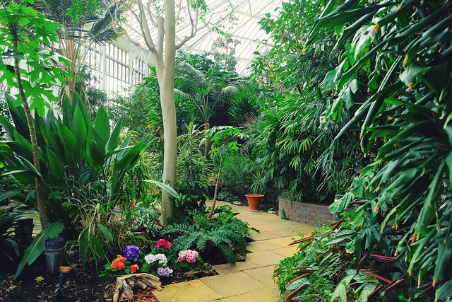Barbican Centre Garden Room Level  Opening Times