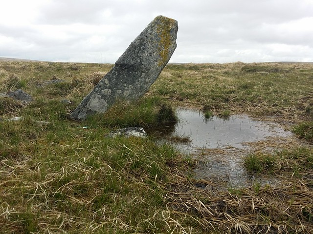 Stone near Sittaford Stone Circle