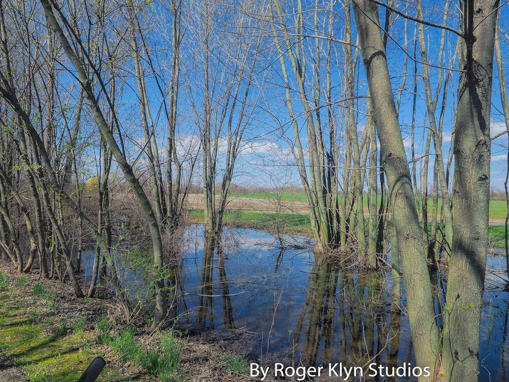 Musk Springs Musk Musk Spring 4 15-5 | by