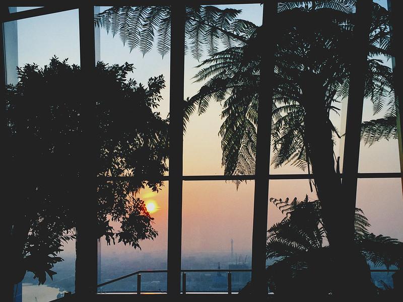 Sky Garden at Sunset