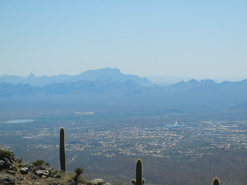 View from Tom's Thumb, Phoenix top places to hike in phoenix where to hike in phoenix what are the best walking trails in phoenix