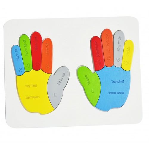 Đồ chơi gỗ - dạy làm toán -  Bé tập đếm ngón tay