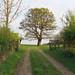 Litle Gregories, Theydon Bois
