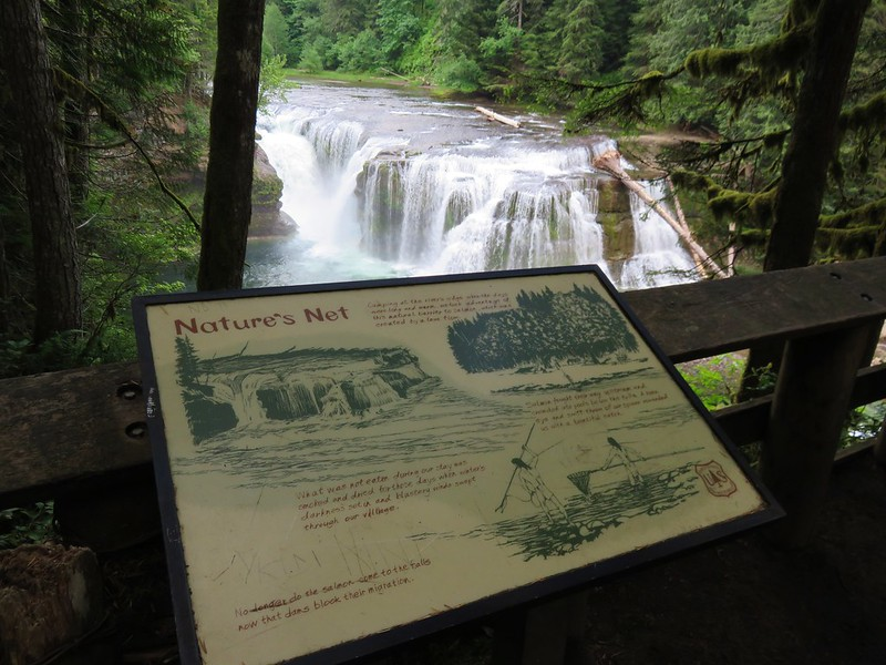 Lower Falls viewing platform