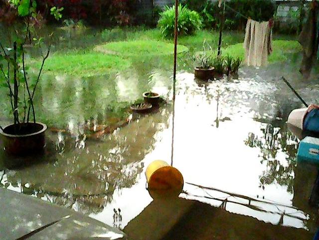Flash flood 2
