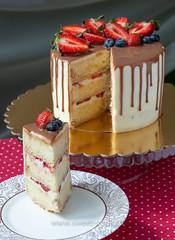 Творожно-сливочный торт в разрезе