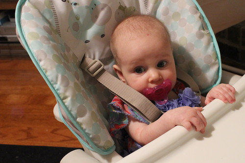 Testing Out the Highchair