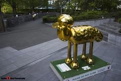 GOLDEN FLEECE No.50 - Shaun The Sheep - Shaun in the City - London - 150511 - Steven Gray - IMG_0259