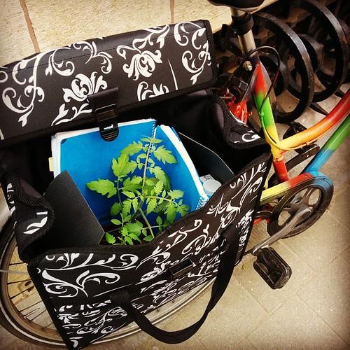 Vandaag in de fietstas. Met zeer veel dank aan @david_spin 😀 #opdefiets