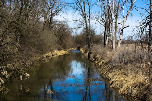 View of Midewin's Prairie Creek from West Patrol Road