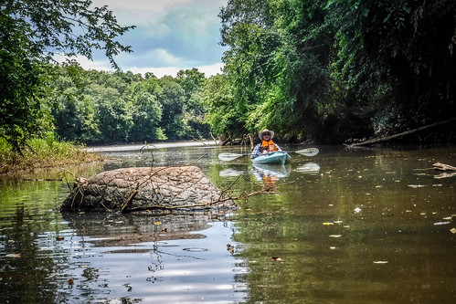 Goat Island in the Broad River-121