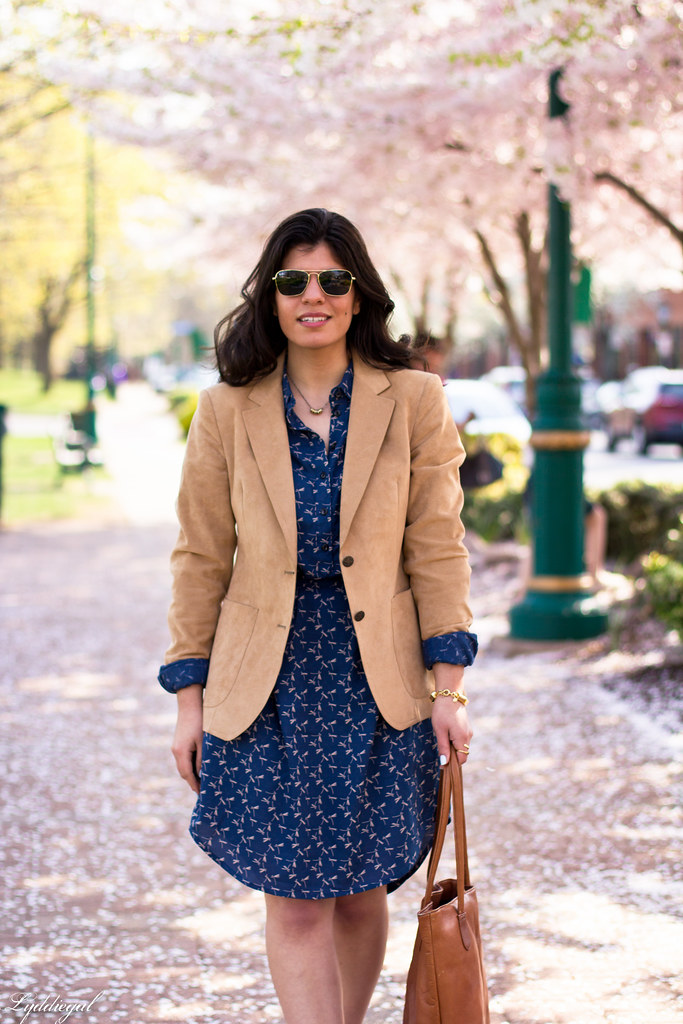 dragonfly print shirt dress, camel blazer.jpg