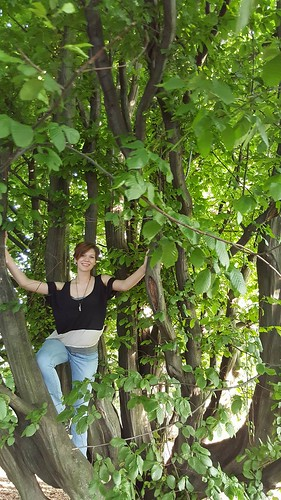 Museum assistant Kelsey in a tree
