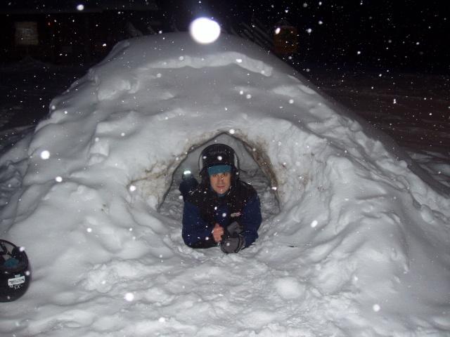 Sele en un iglú en Finlandia