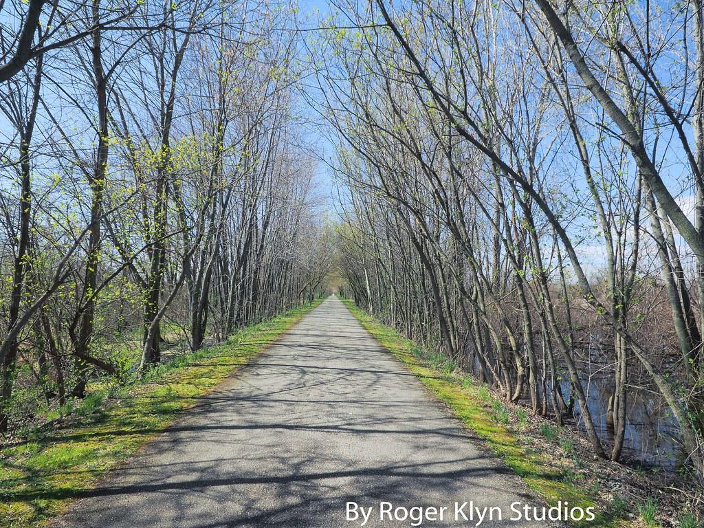 Musk Springs Musk Musk Spring 4 15-4 | by