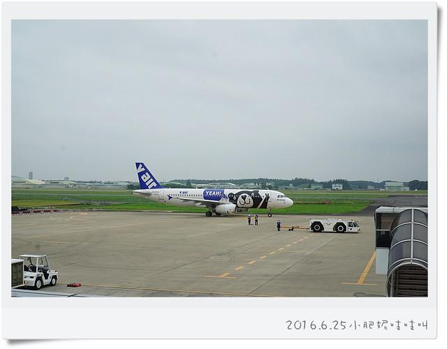 【威航V Air飛日本茨城】空姐怎會這麼可愛??!!
