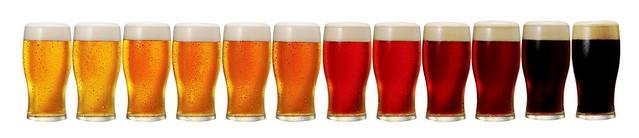 beer-color-line-of-glasses