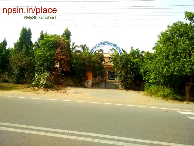 Most famous degree college among community of Sirsaganj student, Narayan Mahavidyalaya near roadways bus stand Shikohabad