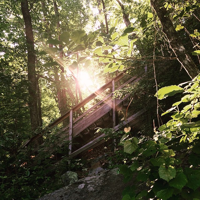 Climbed a bazillion stairs to get to the bridge overlooking the #gorge. #tallulahfalls #tallulahgorge #tallulahgorgestatepark #nature #georgia #northgeorgia #igersga #igersgeorgia #hiking #sunflare