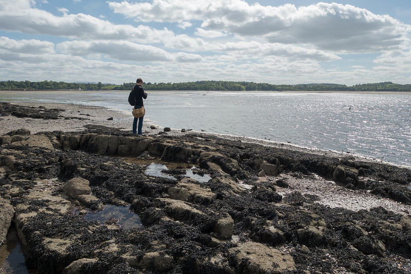 Cramond Island, 25 May 2015 108-1