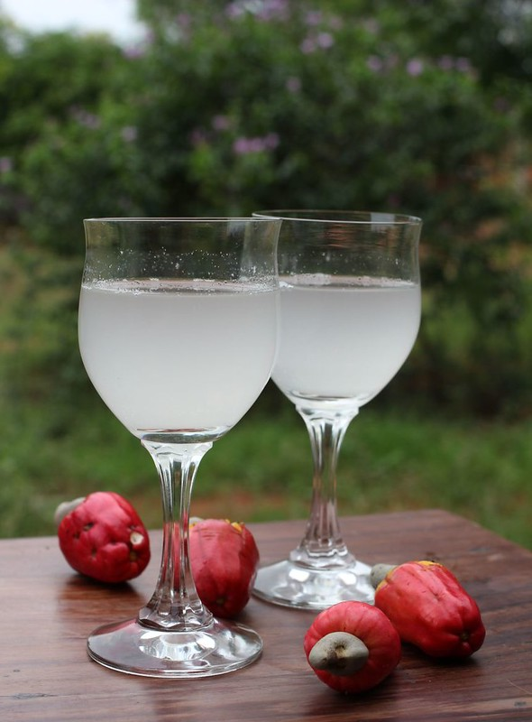 paticheri cashew apple juice  (9)