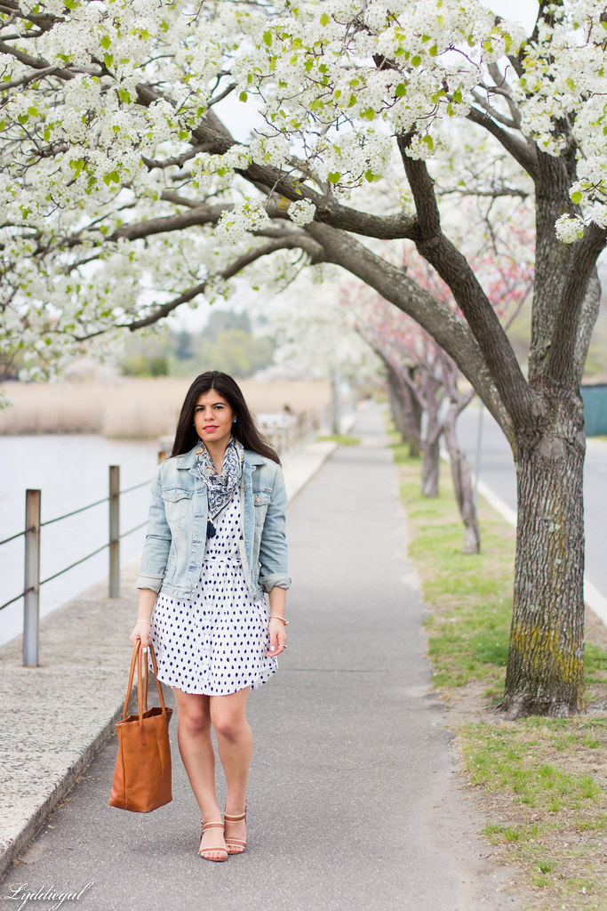 polka dot shirt dress, denim jacket, scarf.jpg
