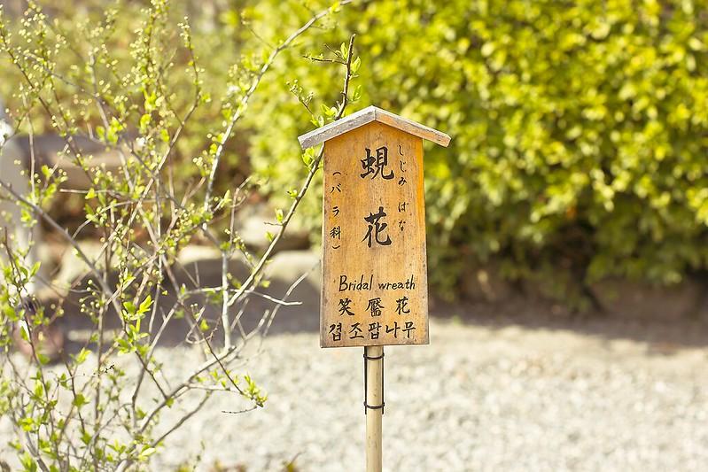 Tenryuji Shrine Japan Kyoto Buddhist Shinto Ukyo-ku Rinzai