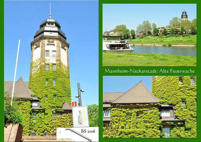 """Nicht nur für meinen Geschmack ist die Mannheimer Neckaruferbebauung Nord (NUB) eine städtebauliche """"Unschönheit"""" - und nicht gerade eine schöne Visitenkarte für die Quadratestadt. Drei hässliche Betonklötze, wie sie in den 1970er-Jahren überall große Mode waren. Ein vierter Klotz, der größte, sollte neben dem Alten Messplatz stehen. Dafür war geplant, die schöne historische Mannheimer Feuerwache abzureißen. Zum Glück wurde dies durch eine Bürgerinitiative verhindert. Das vierte Betonhochhaus blieb Mannheim erspart, die Alte Feuerwache mit ihrem schönen Schlauchturm, heute Kulturzentrum, blieb erhalten. Collinisteg Neckarsteg Foto Brigitte Stolle Mai 2016"""