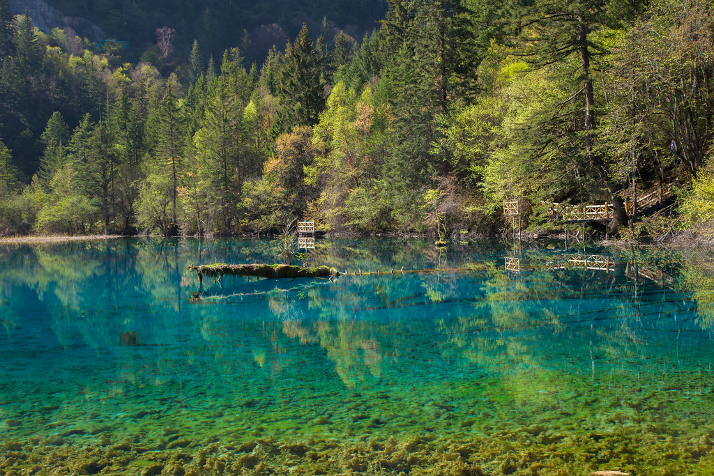 Five Flower Lake, Jiuzhaigou Valley