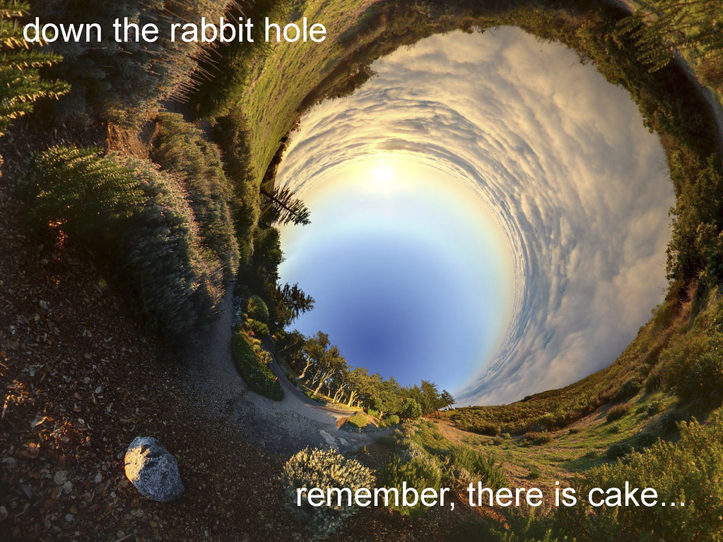 down the rabbit hole graphic