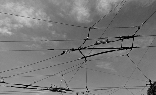 trolley wires