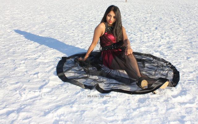 Snow Queen (3)