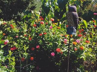 DuPraw Garden