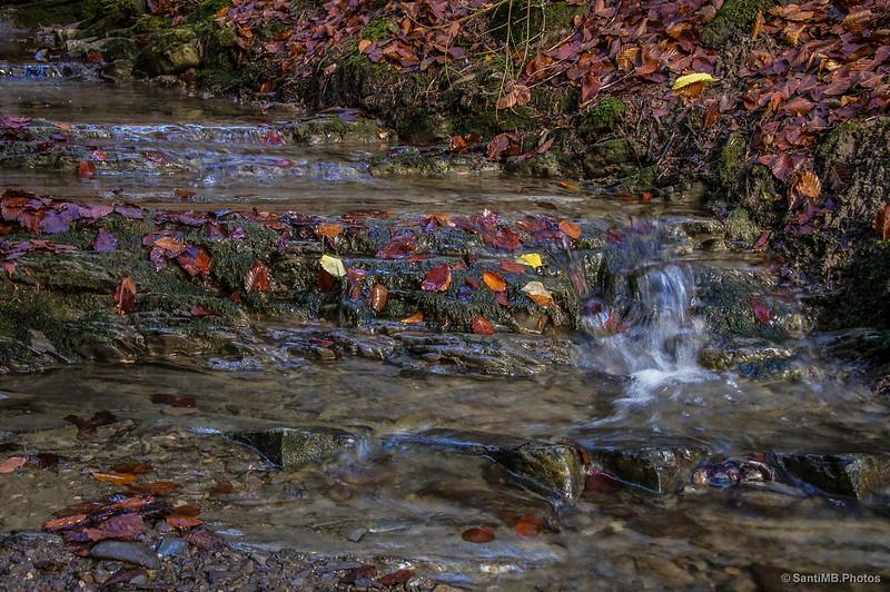 Una pequeña cascada en un arroyo.