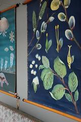 de fabriek op zondag - willow wall map