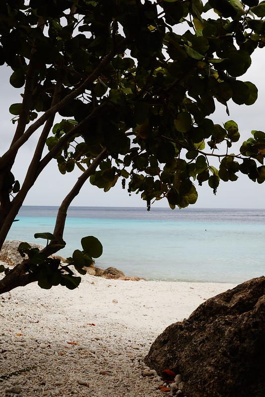 Curacao_0202
