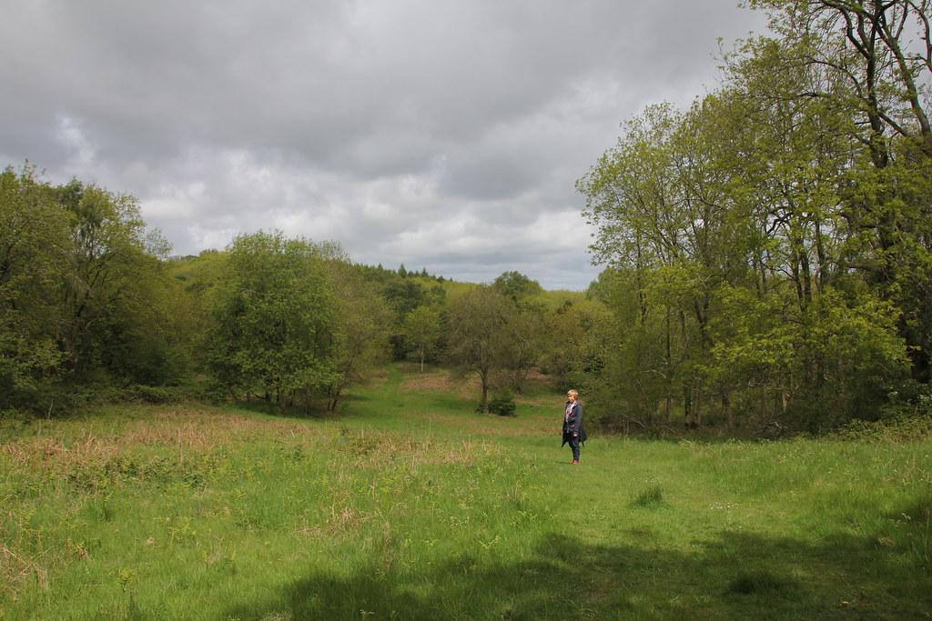 lancashire, hutton roof, warton crag, three brothers, strickland wood, beacon brest, morecambe bay, plain quarry, dalton crags